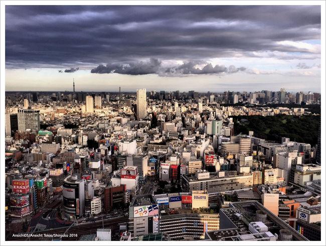 Shinjuku2016c.jpg